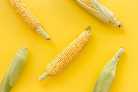 Corn on cobs on yellow background top view Stock Photo