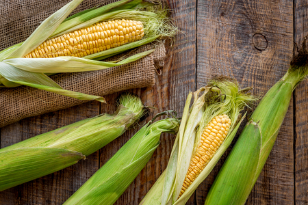 Fresh corn on cobs on rustic wooden table top view. Stock Photo