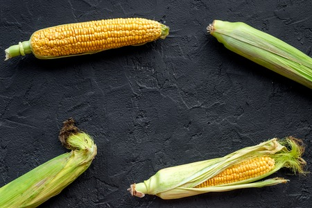 Ripe corn on cobs on black stone background top view.