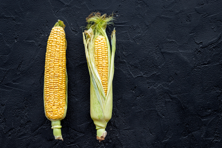 Ripe corn on cobs on black stone background top view copyspace