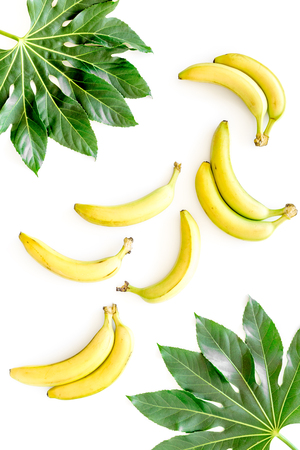 Tropical pattern with big leaves and bananas on white background top view