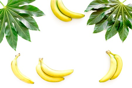 Tropical concept. Lush leaves and ripe bananas on white background top view. Stock Photo