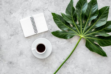 Cup of coffe near notebook and exotic palm leaf on light stone background top view.