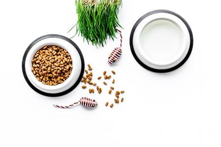 animal sec - nourriture pour chat dans un bol sur fond blanc vue de dessus maquette