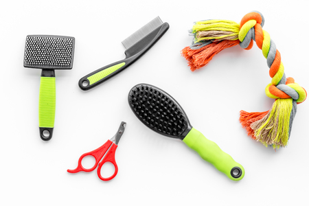 grooming tools for training pet and brushes on white desk background top view