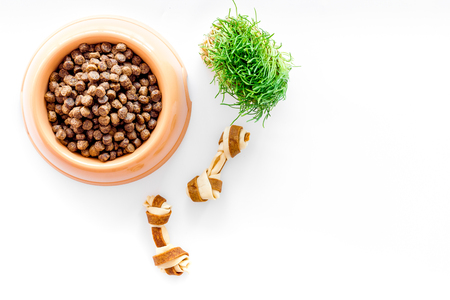large plastic bowl of pet - dog food with toy and plant on white table background top view mockup