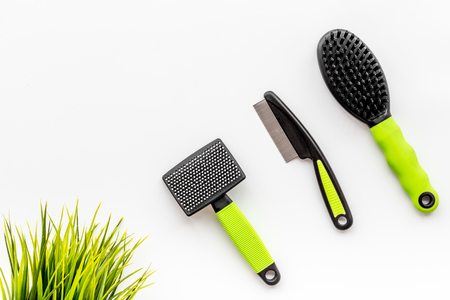 care about pet with brushes and grooming equipment on white table background top view mockup Stock Photo