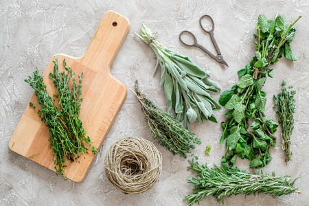 flat lay with fresh herbs and greenery for drying and making spices set on stone kitchen table background