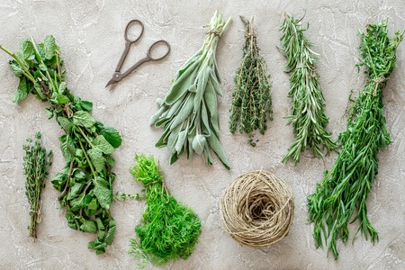 drying fresh herbs and greenery for spice home food on stone kitchen desk background top view pattern