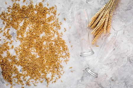 Grains of malting barley near beer glass on grey background top view.