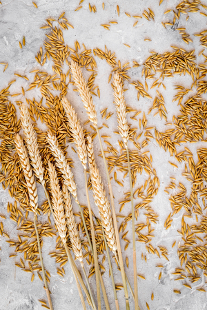 Grains of malting barley on grey background top view. Banco de Imagens