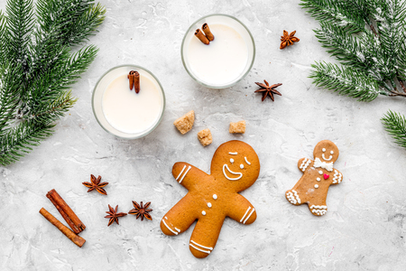 christmas drink cooking eggnog in glasses for celebration with gingerbread, cinnamon and spruce on stone table background flat lay
