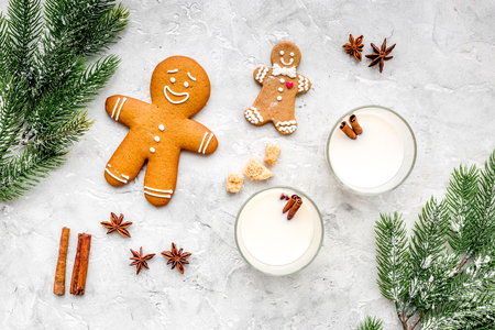 Merry christmas in winter evening with alcohol drink. Eggnog with gingerbread cookie, cinnamon and spruce branch on stone desk background top view copyspace Stock Photo