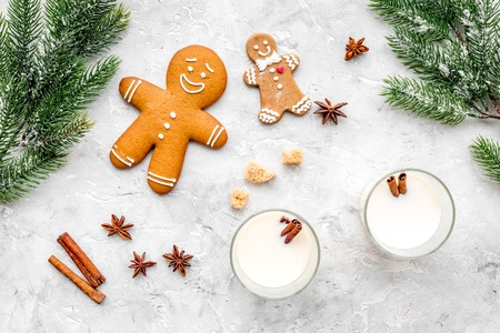 Eggnog, gingerbread cookie with cinnamon and spruce for new year 2018 celebraton winter set. stone background top view