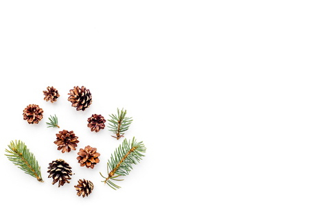 New year symbols pattern. Spruce branches and cones on white background top view.