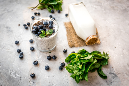 How to eat chia seeds. Dessert with yogurt, chia, blueberries and mint on grey background Stok Fotoğraf