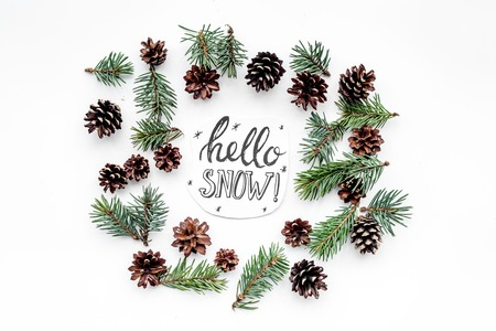 Hello snow hand lettering. Winter pattern with spruce branch and cones on white background top view Imagens