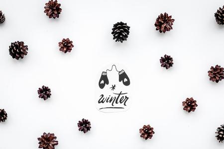 Winterhand belettering en geschilderde wanten. De winterpatroon met pinecones op witte hoogste mening als achtergrond