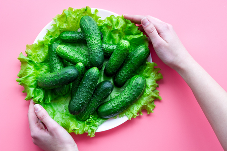 Fresh cucumbers and salad. Pink background top view