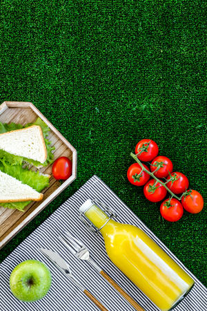Healthy food for picnic. Sanwiches, fruits, vegetables, juice on tablecloth on green grass background top view. Stock Photo
