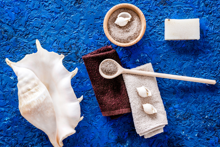 Sea salt from dead sea and shell in cosmetics set for spa on blue background top view Banco de Imagens