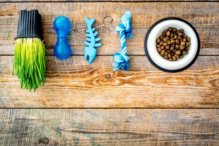 Toys for cat near dry food and grass in pot on wooden background top view copyspace Banco de Imagens