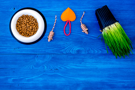 Toy mouse for cat near dry food and grass in pot on blue wooden background top view copyspace