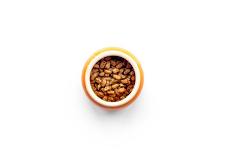Pet food in bowl on white background top view copyspace