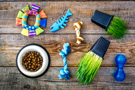 Toys for cat near dry food and grass in pot on wooden background top view Stock Photo