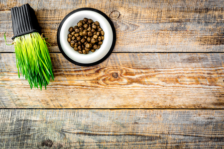 Pet food in bowl and grass in pot on wooden background top view copyspace Imagens - 89916051