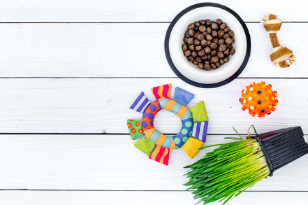 Toys for cat near dry food and grass in pot on white wooden background top view copyspace Banco de Imagens