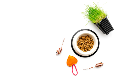Toy mouse for cat near dry food and grass in pot on white background top view copyspace