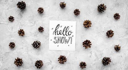 Hello snow hand lettering. Winter pattern with pinecones on grey background top view Imagens