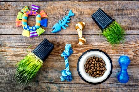 Toys for cat near dry food and grass in pot on wooden background top view Banco de Imagens