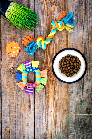 Toys for cat near dry food and grass in pot on wooden background top view copyspace Фото со стока