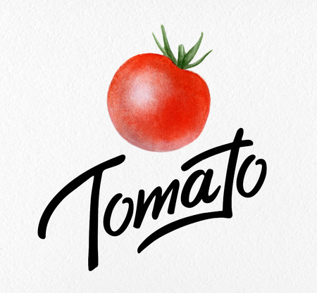 Poster with red watercolor drawing and lettering organic tomato - natural vegetables for postcard, logo