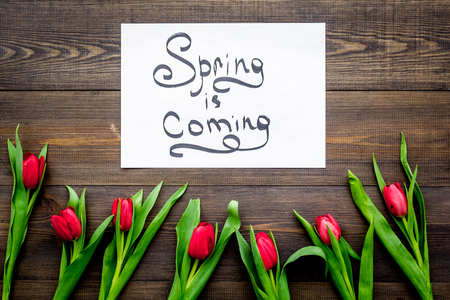 Spring is coming lettering surrounded by red tulips on dark wooden background top view