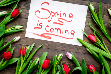 Spring is coming lettering surrounded by colorful tulips on dark wooden background top view. Imagens