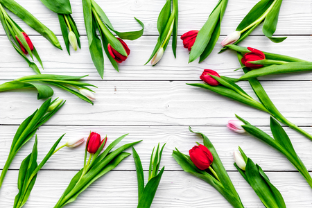 First spring flowers. Colorful tulips on white wooden background top view.