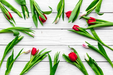 First spring flowers. Colorful tulips on white wooden background top view. Banco de Imagens - 94427294