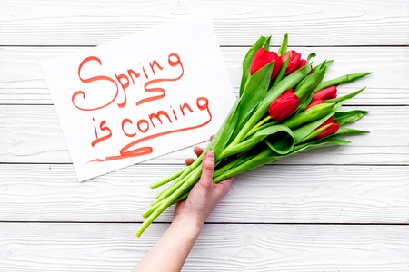 Spring is coming lettering near bouqet of red tulips on white wooden background. Imagens