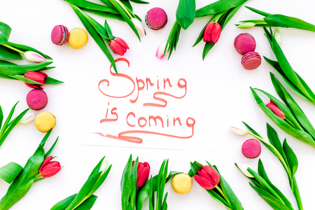 Spring is coming hand lettering surrounded by red tulips and sweets macarons on white background top view Imagens