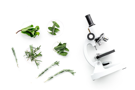 Food analysis. Pesticides free vegetables. Herbs rosemary, mint near microscope on white background top view