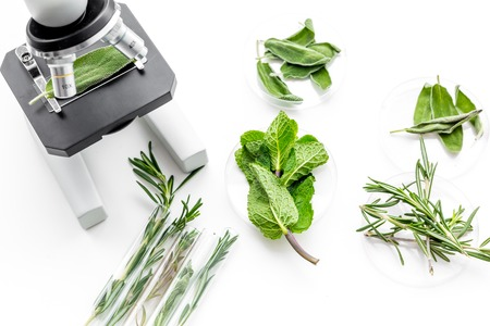 Analysing food concept. Healthy products. Herbs rosemary, mint under microscope on white background top view