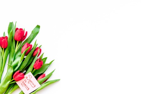 Spring mood. Tulips near Spring is coming hand lettering on white background top view.
