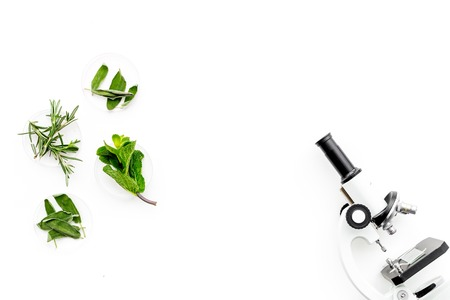 Food analysis. Pesticides free vegetables. Herbs rosemary, mint near microscope on white background top view.
