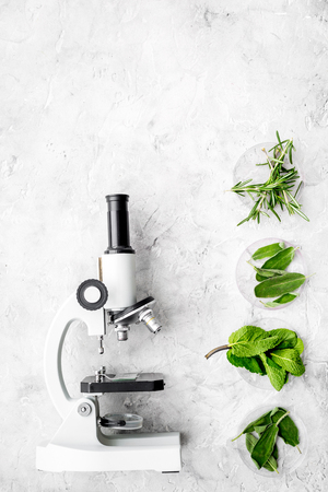 Food analysis. Pesticides free vegetables. Herbs rosemary, mint near microscope on grey background top view. Reklamní fotografie