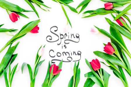 봄 흰색 배경 위에 화려한 튤립으로 둘러싸인 레터링 오는입니다.