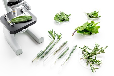 Analysing food concept. Healthy products. Herbs rosemary, mint under microscope on white background top view.