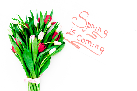 Spring is coming hand lettering surrounded by colorful tulips on white background top view. Banco de Imagens - 95030665